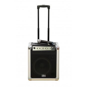 PA10W Акустическая система - портативная - Soundking, 50Вт