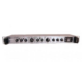 DSP2401 Цифровой процессор аудиоэффектов - Biema