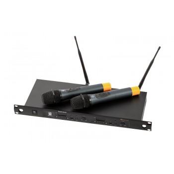 MD880 Радиосистема с микрофонами - WOLDY (кейс)